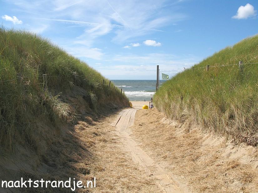 strand en zee afbeeldingen